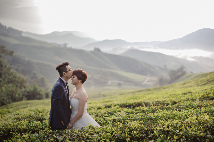 pre-wedding-at-cameron-highlands-7120