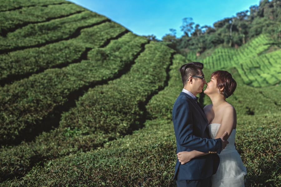 pre-wedding-at-cameron-highlands-7166