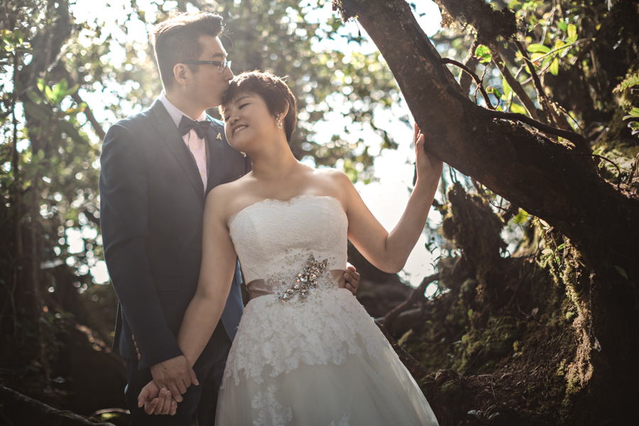 pre-wedding-at-cameron-highlands-7267