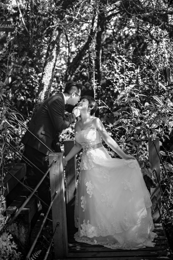 pre-wedding-at-cameron-highlands-7312