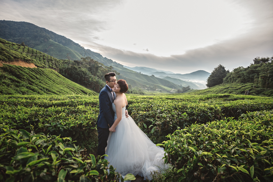 pre-wedding-at-cameron-highlands-7640