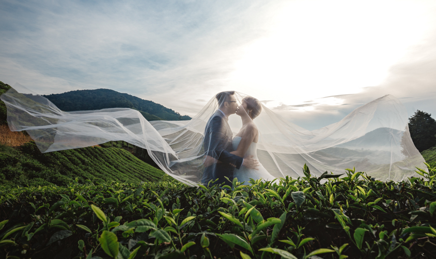 pre-wedding-at-cameron-highlands-7649