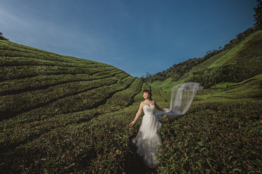 pre-wedding-at-cameron-highlands-7677