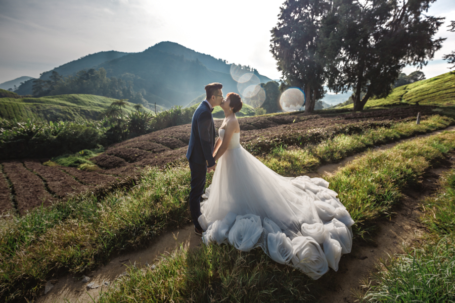 pre-wedding-at-cameron-highlands-7711