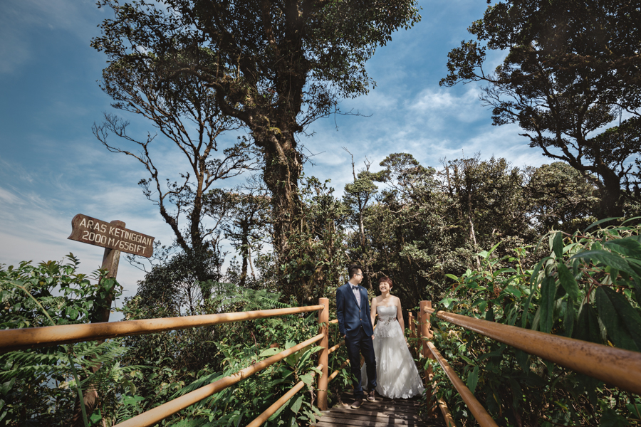 pre-wedding-at-cameron-highlands-7779